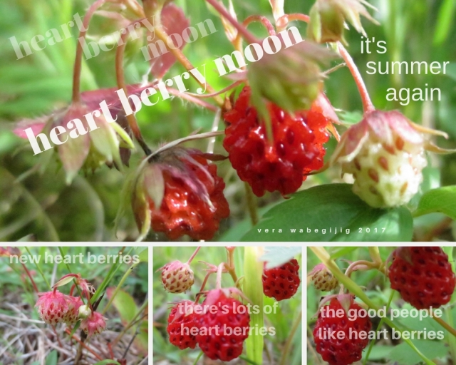 heart berry moon