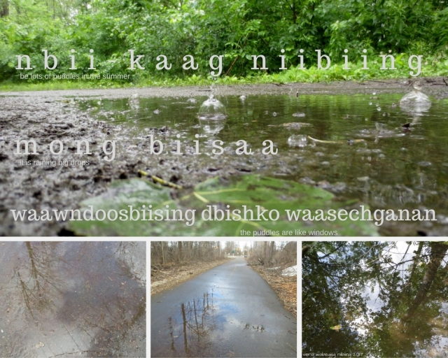 nbii-kaagbe lots of puddles (1)