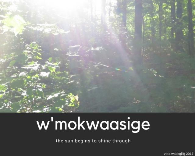 w'mokwaasige1