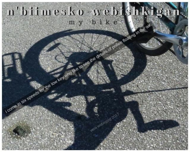 n'biimesko-webishkigan